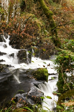 One of my first attempts at Waterfall phtography